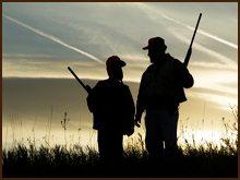 polowania